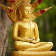 Benevolent Buddha - Stock Photo