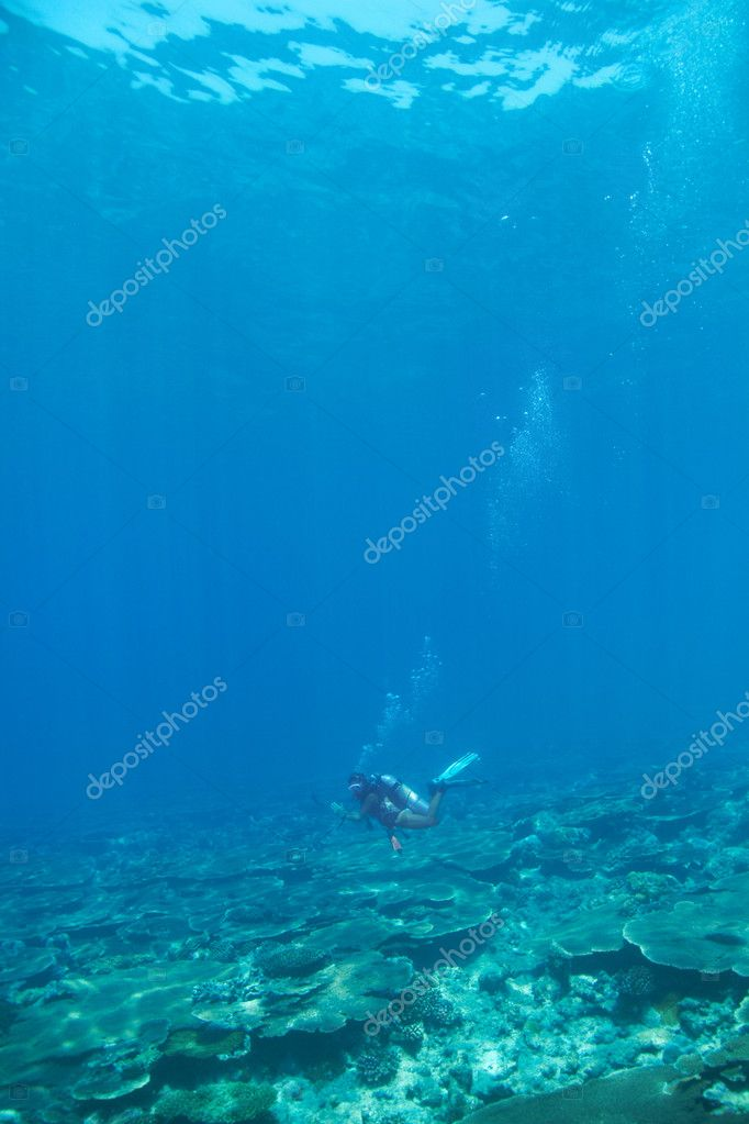A woman exploring the seabed in scuba gear - copyspace — Stock Photo #12154471