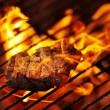 Making a meal of some tender meat - Stockfoto
