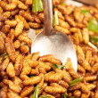 Dishing up a portion of fried larvae - Stok fotoraf