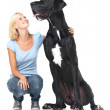 He may be big, but inside he&amp;#039;s still just a puppy! - Stock Photo