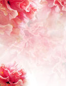 Background — Stock Photo