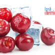Fresh cherries — Stock Photo #11311987