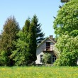 Stock Photo: House and trees
