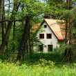 The house in forest — Stock Photo