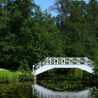 Lake and the bridge — Stock Photo