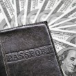Passport and money - Stock Photo