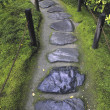 Wet stone pathway — Stock Photo