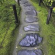 Stock Photo: Wet stone pathway