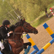 Show Jumping Equestrian - Stock Photo