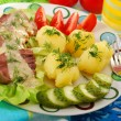 Pork tongue in horse radish and dill sauce — Stock Photo #11044867