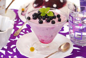 Blueberry dessert — Stock Photo