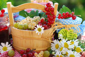 Summer fruits and preserves in the garden — Stok fotoğraf