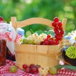 Summer fruits and preserves in the garden — Stock Photo #11970233