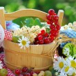Summer fruits and preserves in the garden - Stock Photo