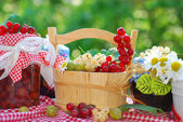 Summer fruits and preserves in the garden — Stockfoto