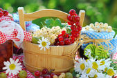 Summer fruits and preserves in the garden — Стоковое фото