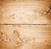 老木 — 图库照片