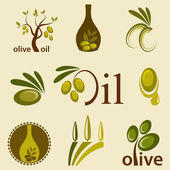 Olive oil — Stock Vector