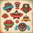 Vintage labels and badges — Stock Vector