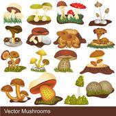 Vector mushrooms — Stock Vector