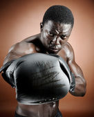 Strong boxer — Stock Photo