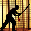 Swordsman silhouette - Stock Photo