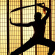 Swordsman silhouette - Stockfoto