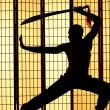 Swordsman silhouette - 