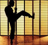 Kung fu kick — Stok fotoğraf