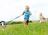 Happy children running outdoors with dog — Stok fotoğraf