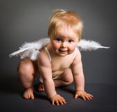 Infant baby with angel wings on neutral background — Stock Photo