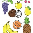 Different fruits set . vector illustration — Stock Vector