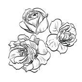 Black rose on white background — Stock Vector