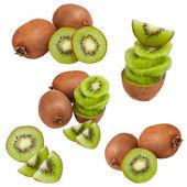 Coleção de kiwi — Foto Stock