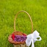 Lilac petals — Stock Photo #11047485