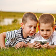 Two brother lying on meadow — Stock Photo #11072578