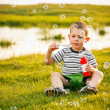 Boy sitting on green grass — Stock Photo #11072619