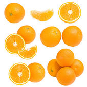Collection of orange — Foto de Stock