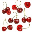 Cherry collection — Foto de Stock