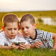 Two brother lying on meadow — Stock Photo #11264968