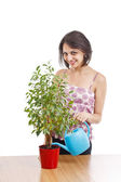 Young woman irrigate plants — Stock Photo