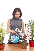 Cheerful girl watering flowers — Stock Photo