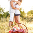 Picnic basket — Stockfoto