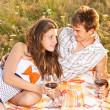 Stockfoto: Couple having a picnic