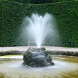 Stock Photo: Small fountain in the park