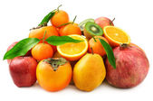 Collection fruit — Stock Photo