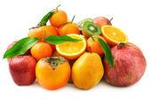 Sběr ovoce — Stock fotografie