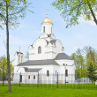 Orthodox Church in Vldaimir — Stock Photo #11322477