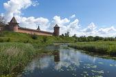 Russian river landscape — Stock Photo